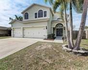 11929 Lark Song Loop, Riverview image