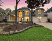30 Purple Martin Place, The Woodlands image