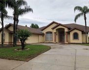 10000 Spring Lake Drive, Clermont image