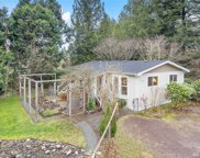 41204 Upper Creek Rd, Gold Bar image