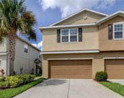 8839 Turnstone Haven Place, Tampa image