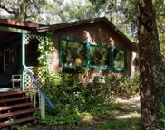 1185 Piney Woods Trail, Osteen image