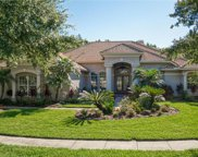 16339 Burniston Drive, Tampa image