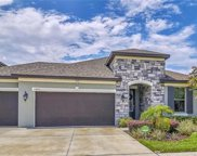 11843 Cross Vine Drive, Riverview image