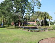 1001 Spoonbill Dr., Conway image