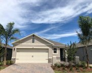 209 Caryota Court, New Smyrna Beach image