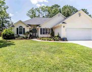 3056 Dewberry Dr., Conway image