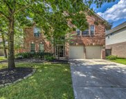 1131 Arden Forest Drive, Spring image