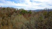 331 Chestnut Ridge, Walland image