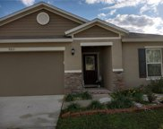 9215 Freedom Hill Drive, Seffner image