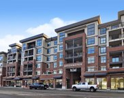 22638 119 Avenue Unit 608, Maple Ridge image