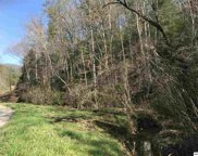 Lot 1 Obes Branch Road, Sevierville image