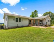 344 Roubdioux Road, Bessemer image