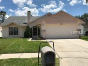 7031 Hollowell Drive, Tampa image