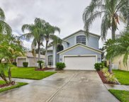 11844 Lark Song Loop, Riverview image