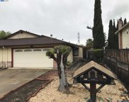 1742 Mira Loma St, Livermore image