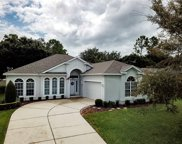 2063 Dobson Street, Clermont image