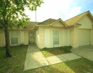 4617 Cabbage Palm Drive, Valrico image