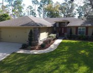 55 Fern Crest Drive, Debary image