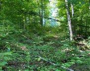 Shawnee Trail Unit 2.5 acres, Gaylord image