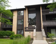 6137 Knoll Wood Road Unit 305, Willowbrook image