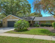 3119 Blue Heron Street, Safety Harbor image
