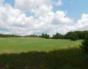 1079 W Miller Road Unit 48.5 acres, Mio image