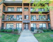 8465 W Lawrence Avenue Unit #2B, Chicago image