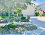 11723 Cotton Brook Court, Tomball image