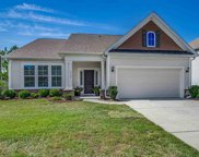 3153 Bramble Glen Dr., Myrtle Beach image