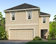 9114 Water Chestnut Drive, Tampa image