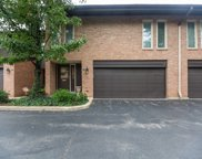 1723 Wildberry Drive Unit D, Glenview image