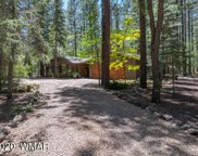 2994 White Oak Drive, Pinetop image