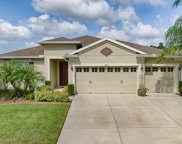 30201 Hackney Loop, Mount Dora image