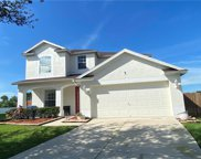 13317 Amber Sky Place, Riverview image