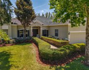 3361 Tumbling River Drive, Clermont image