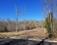 306 Caney View Drive, Harriman image