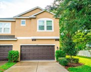 5601 Tranquil Pond Place, Riverview image
