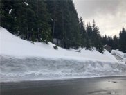 14 Ober Strasse, Snoqualmie Pass image