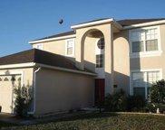 19140 Meadow Pine Drive, Tampa image