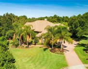 3130 Olivia Court, Land O' Lakes image