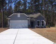 228 Tilly Ct., Conway image