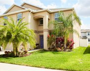 12324 Ballentrae Forest Drive, Riverview image