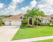 3175 Foxwood Lane, Tarpon Springs image