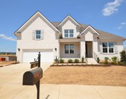1021 Alpaca Drive (404), Spring Hill image