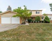 135 Tanglewood Drive, Elk Grove Village image