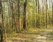 Spikehorn Trail Unit PAR 20, Indian River image