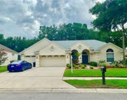 4312 Fallbrook Boulevard, Palm Harbor image