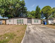 4914 Murray Hill Drive, Tampa image