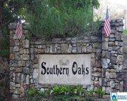 Southern Oaks Ln Unit 1, Odenville image